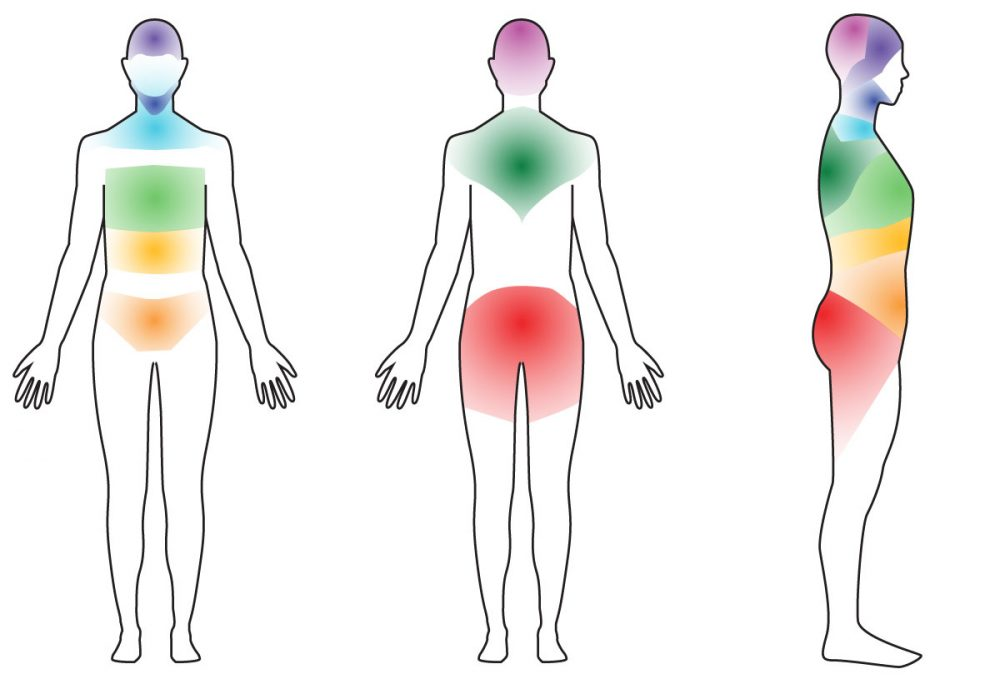 Body drawing with Body of 9 body areas marked