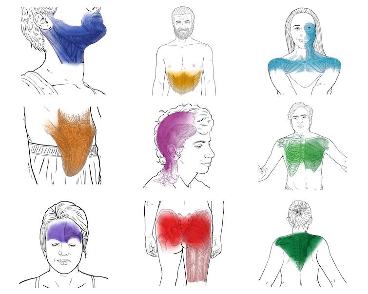 Body of 9 Regions